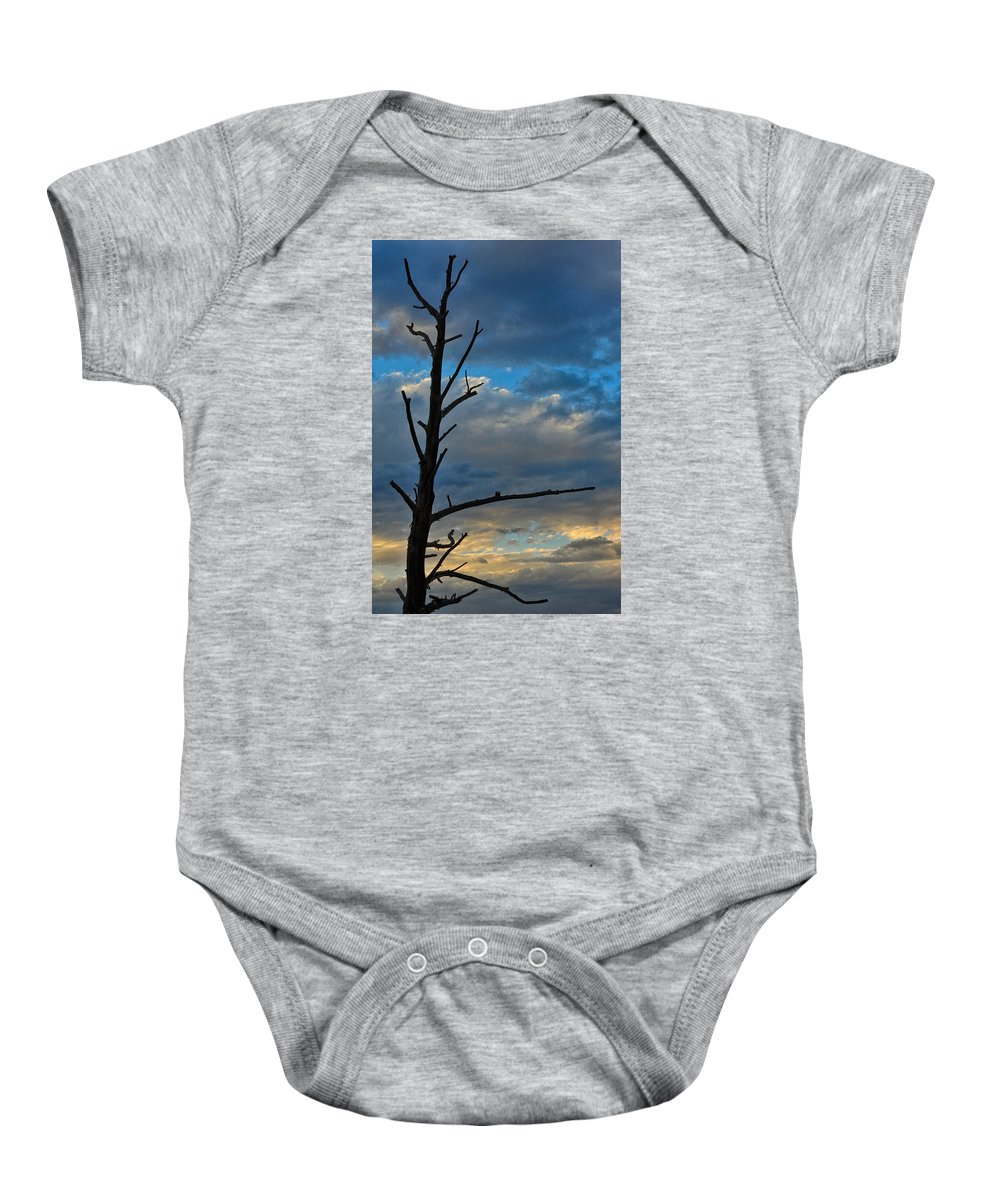 Dead Tree Baby Onesie featuring the pyrography Dead With Color by Robert Ploen