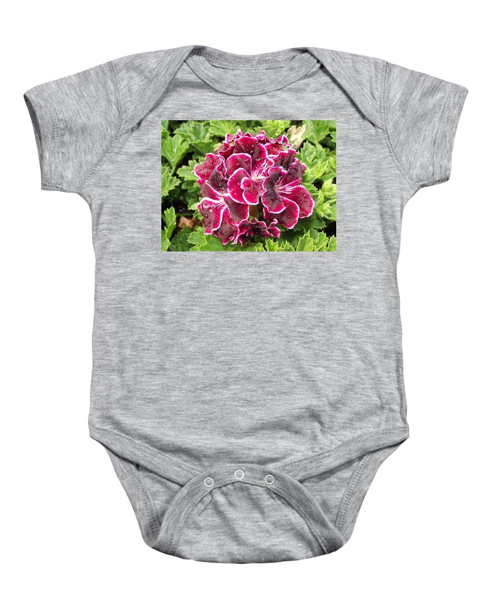 Purple Baby Onesie featuring the photograph Deep Purple Geranium by Pamela Pursel