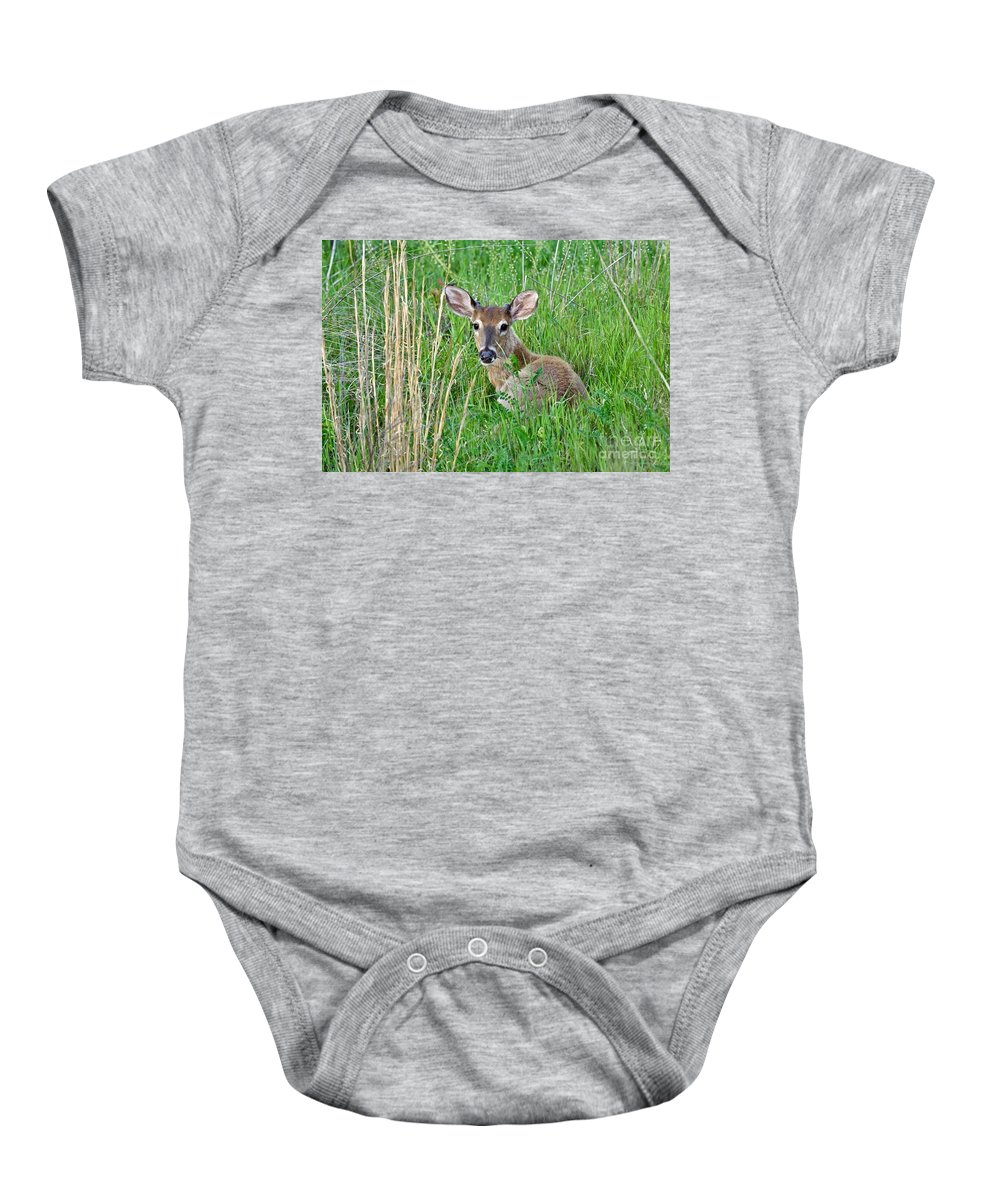 Animal Baby Onesie featuring the photograph Deer Laying In Grass by Jeramey Lende