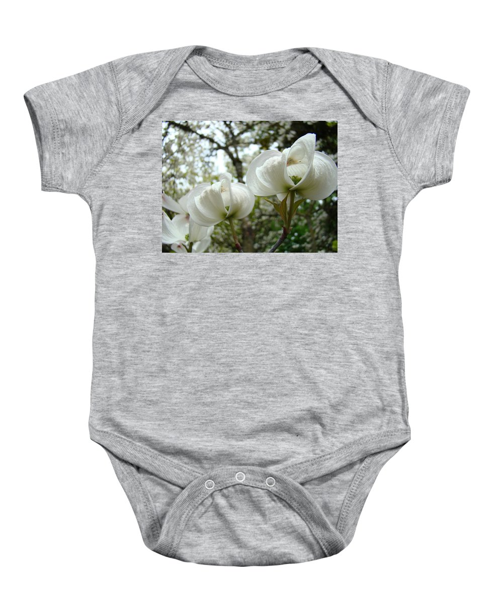 Dogwood Baby Onesie featuring the photograph Dogwood Flowers White Dogwood Trees Blossoming 8 Art Prints Baslee Troutman by Baslee Troutman