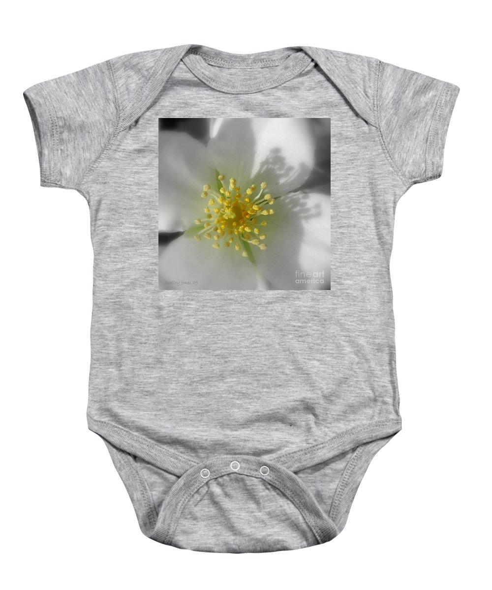 Photography Baby Onesie featuring the photograph Dogwood by Shelley Jones