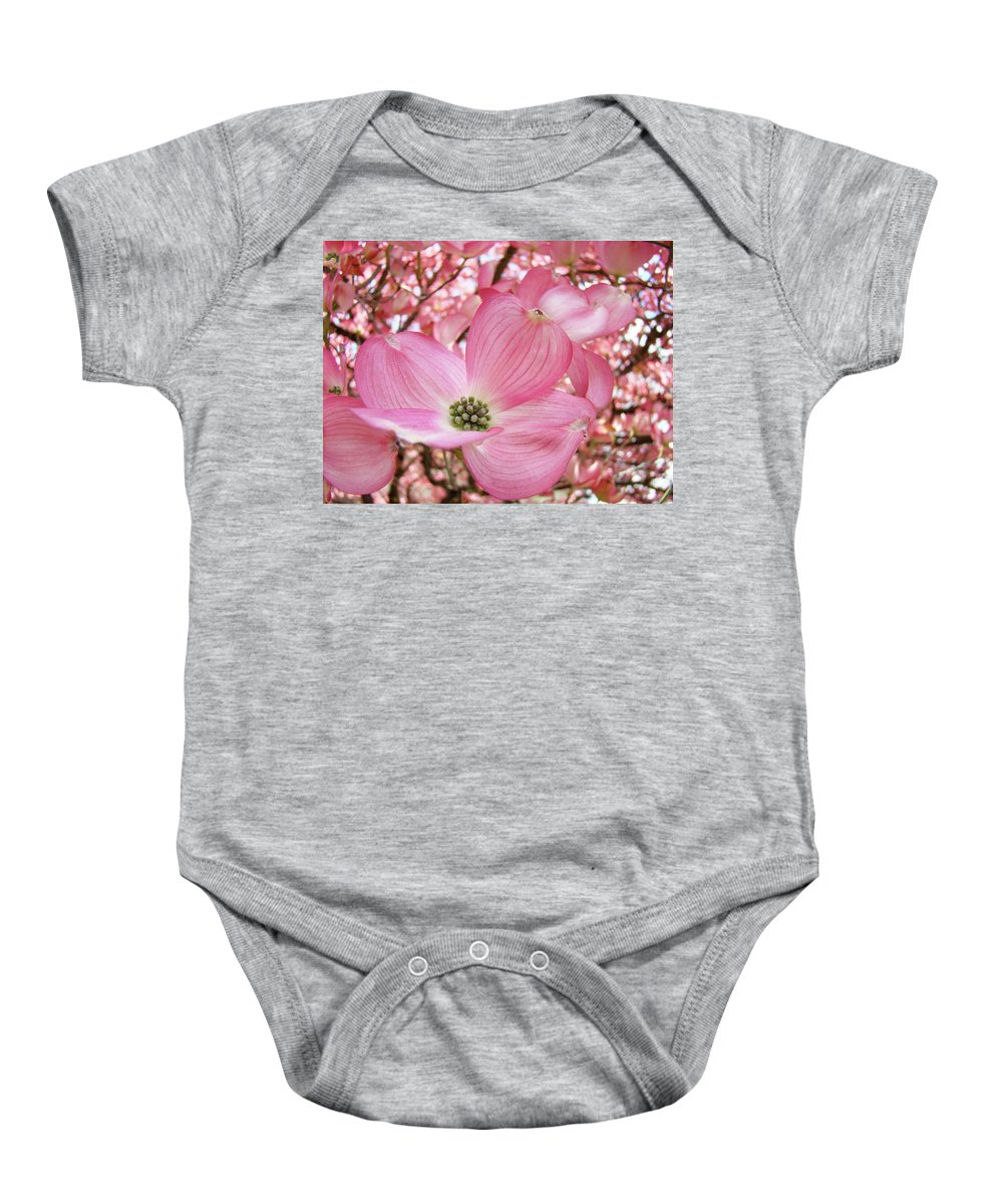 Dogwood Baby Onesie featuring the photograph Dogwood Tree 1 Pink Dogwood Flowers Artwork Art Prints Canvas Framed Cards by Baslee Troutman
