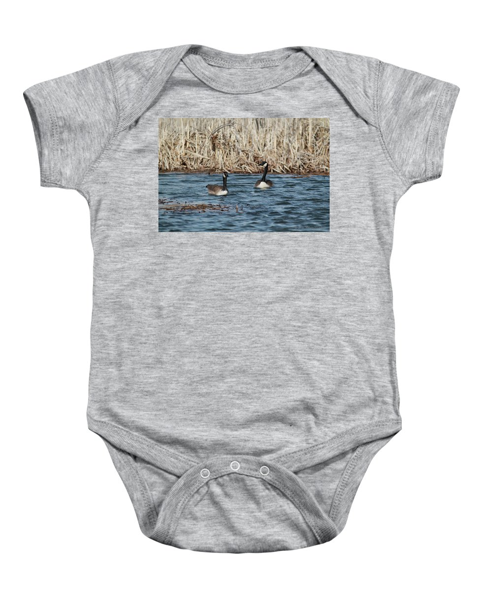 Geese Birds Waterfowl Wildlife Nature Water Baby Onesie featuring the photograph Down At The Bay by Brandon and Becky Holley