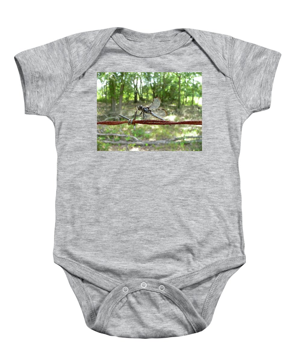 Dragonfly Baby Onesie featuring the photograph Dragonfly On Barbed Wire by Al Powell Photography USA