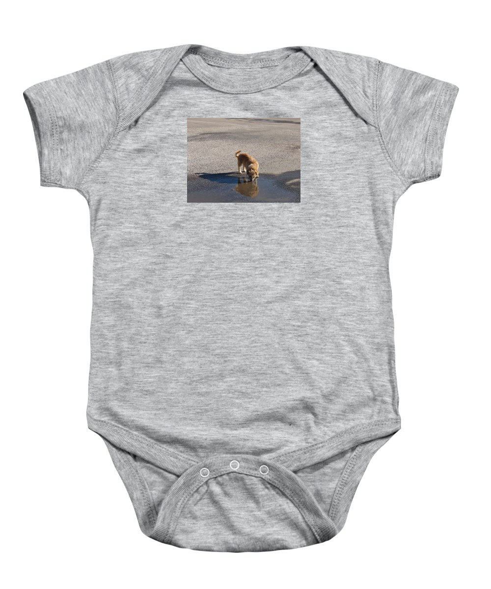 Dog Baby Onesie featuring the photograph Drinking Enough For Reflection And Shadow by J R  Seymour