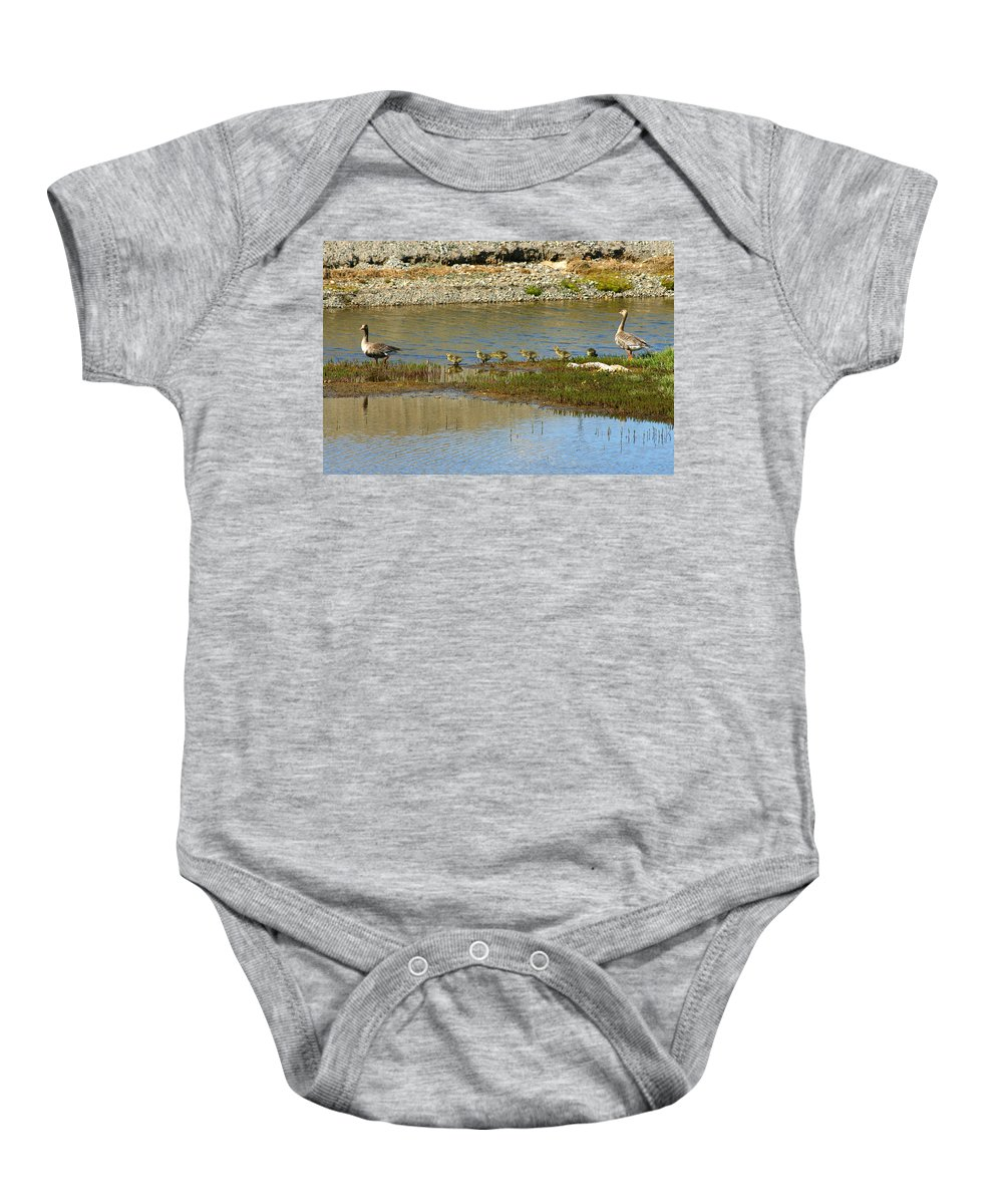 Ducks Baby Onesie featuring the photograph Ducks In A Row by Anthony Jones