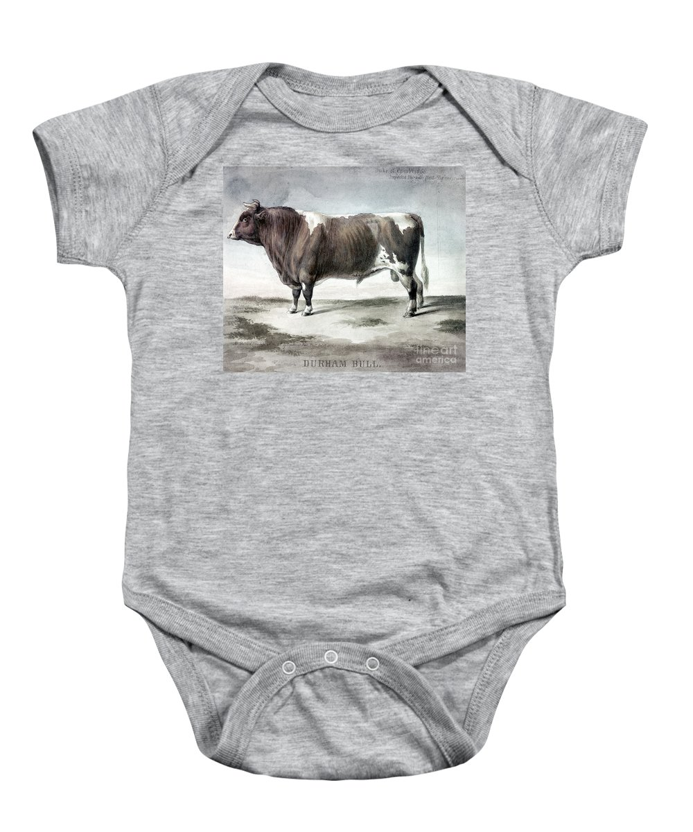 1856 Baby Onesie featuring the photograph Durham Bull, 1856 by Granger