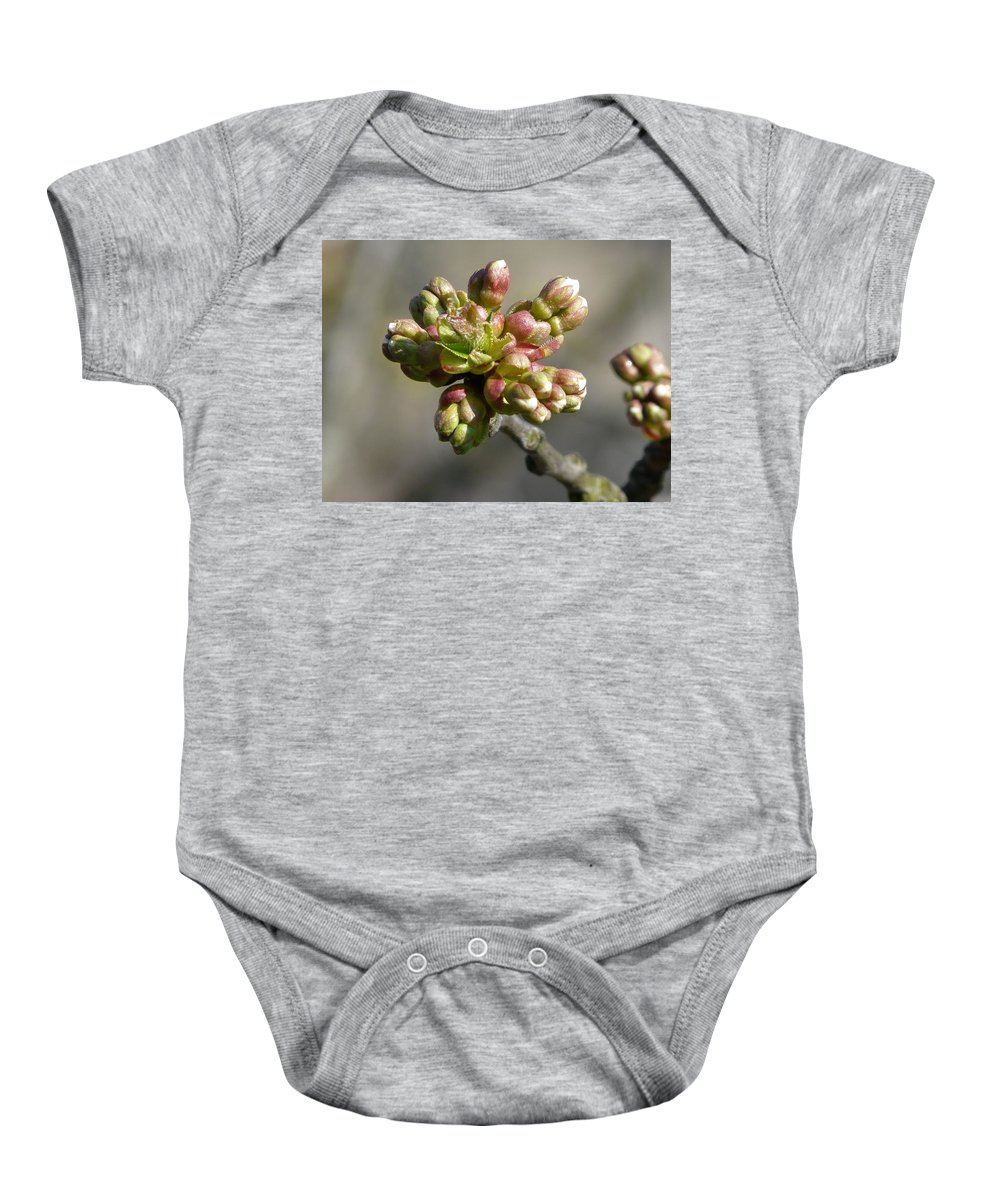 Cherry Baby Onesie featuring the photograph Early Cherry Blossom by Valerie Ornstein