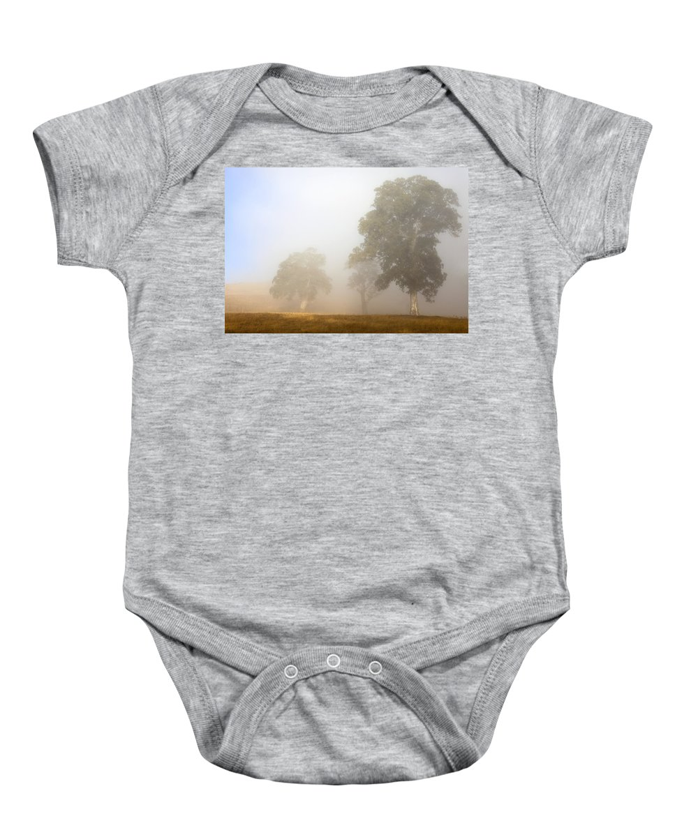 Gum Tree Baby Onesie featuring the photograph Emerging From The Fog by Mike Dawson