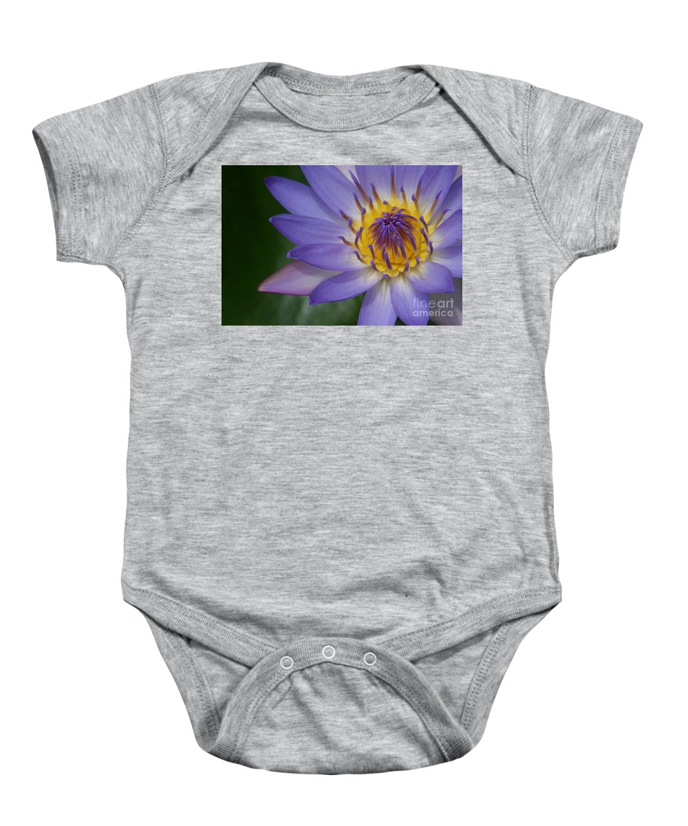 Aloha Baby Onesie featuring the photograph Endymion by Sharon Mau