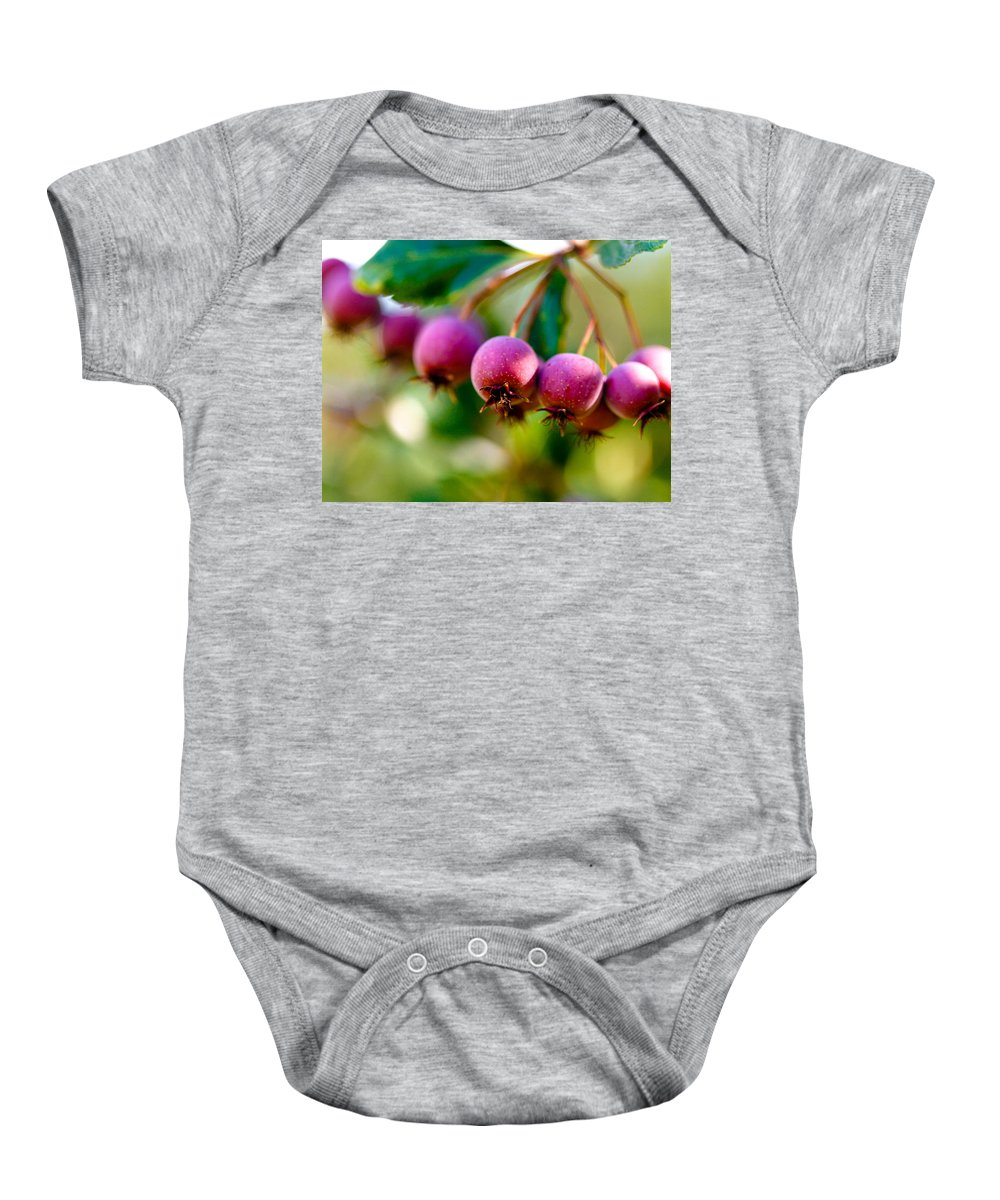 Berry Baby Onesie featuring the photograph Fall Berries by Marilyn Hunt