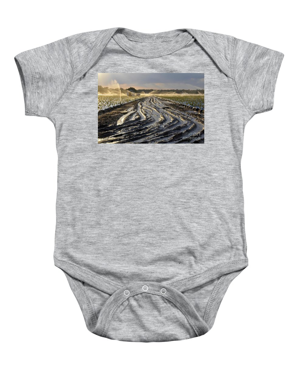Farming Baby Onesie featuring the photograph Farming Strawberries by David Lee Thompson