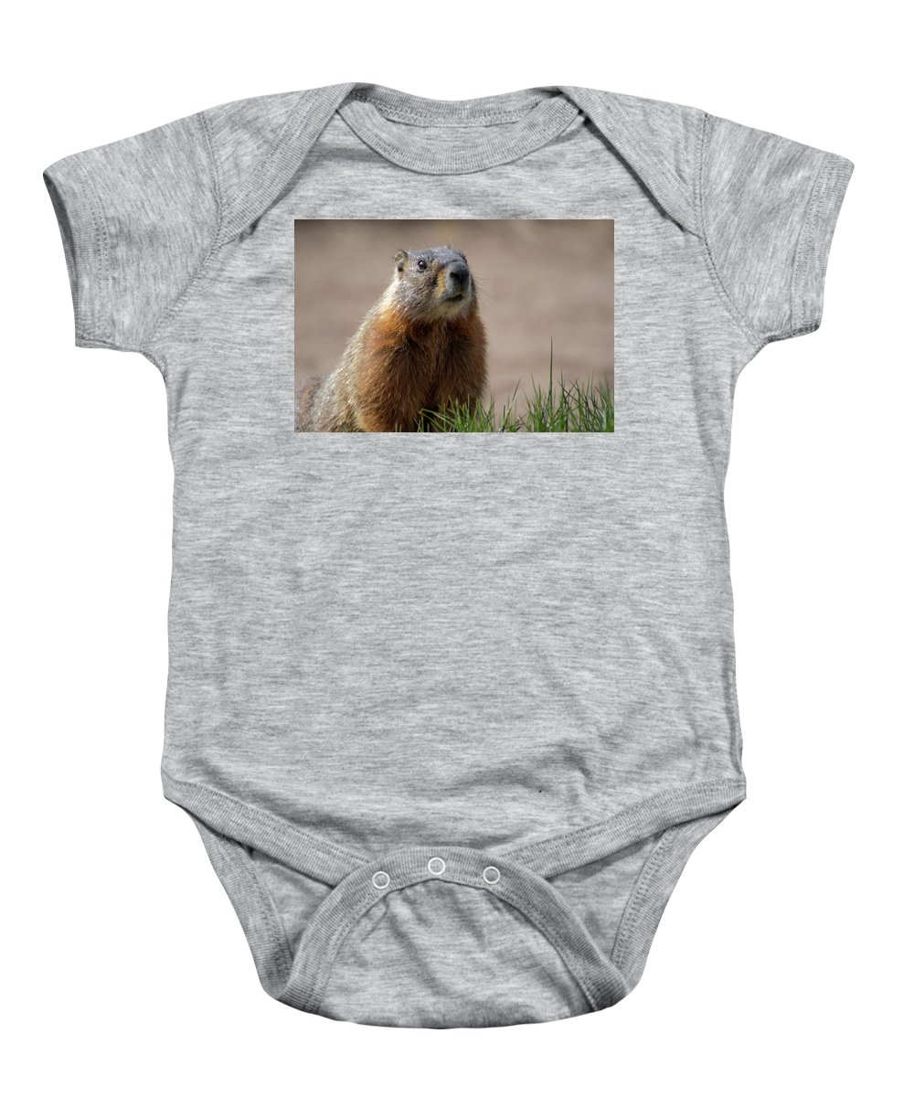 Wyoming Baby Onesie featuring the photograph Fearless by Frank Madia