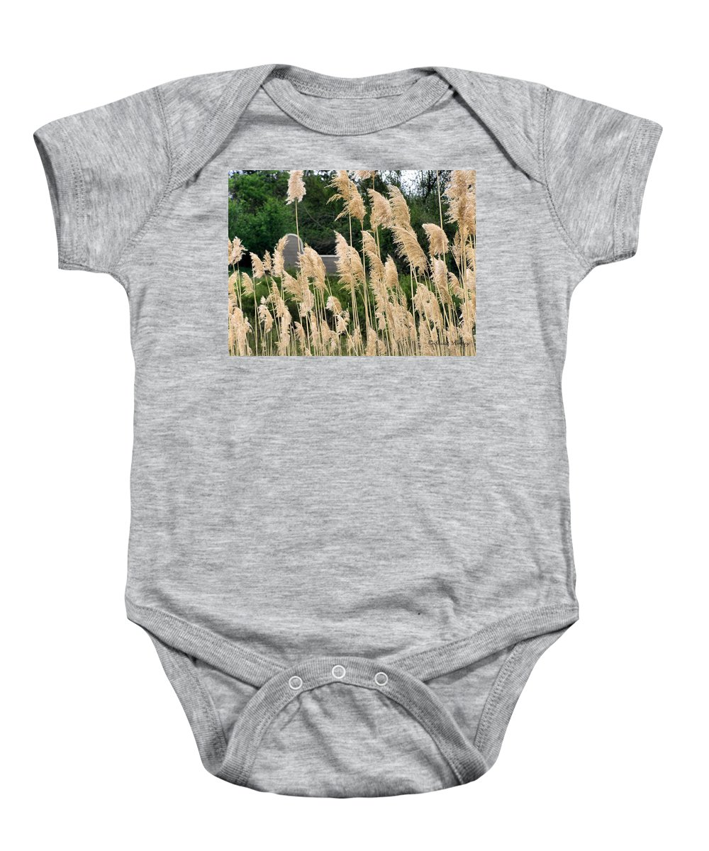 Weeds Baby Onesie featuring the photograph Feathers by Susan Kinney