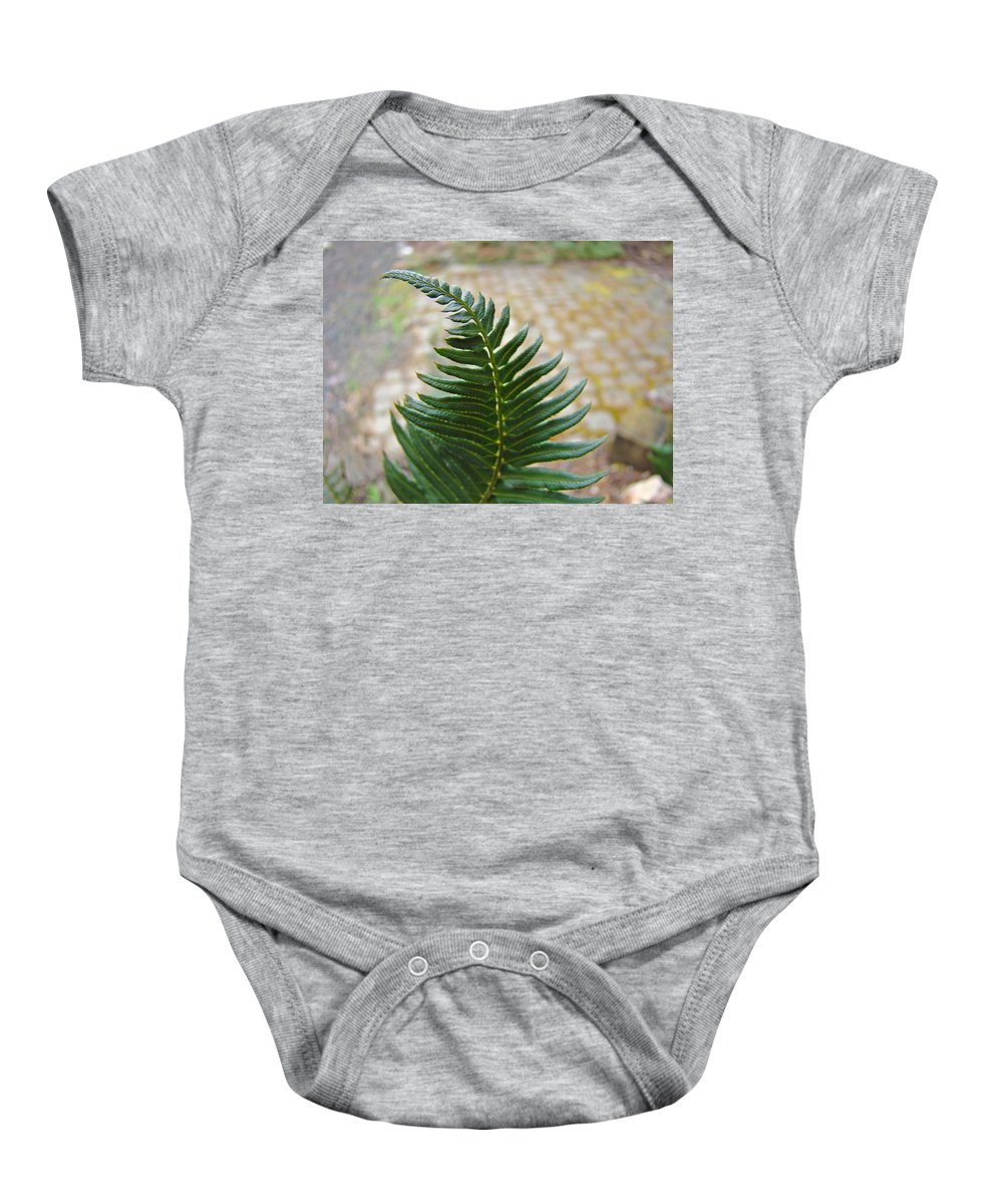 Fern Baby Onesie featuring the photograph Fern Art Prints Green Garden Fern Branch Botanical Baslee Troutman by Baslee Troutman