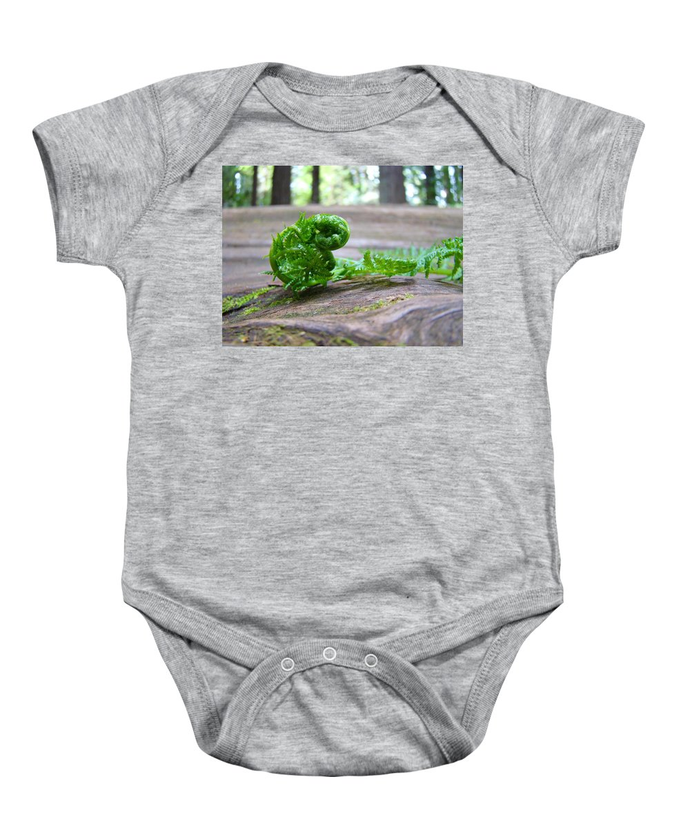 Fern Baby Onesie featuring the photograph Fern On Big Redwood Tree Art Prints Baslee Troutman by Baslee Troutman