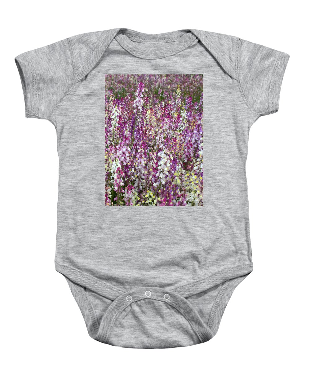 Flowers Baby Onesie featuring the photograph Field Of Multi-colored Flowers by Carol Groenen