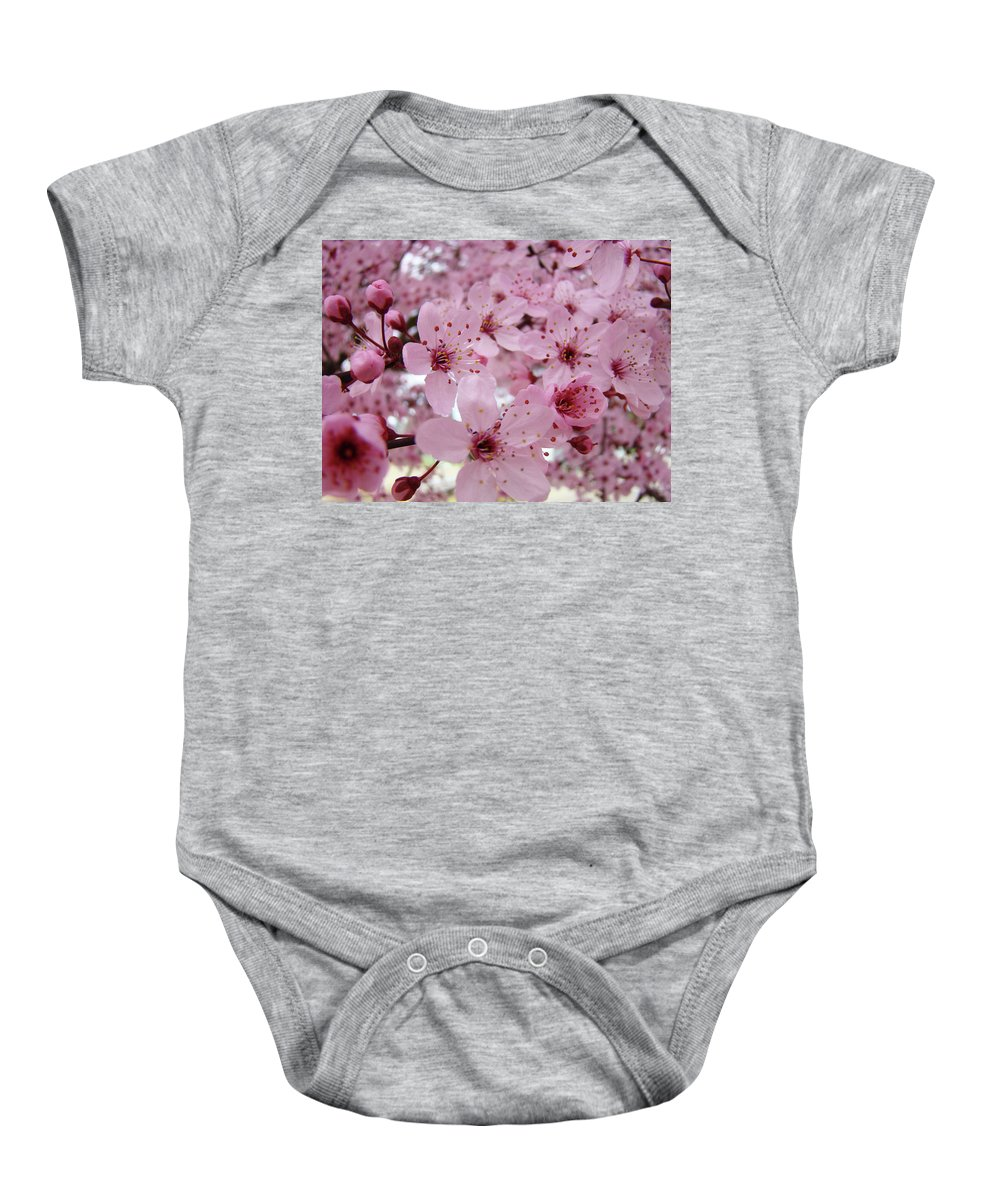 Blossom Baby Onesie featuring the photograph Fine Art Prints Spring Pink Blossoms Trees Canvas Baslee Troutman by Baslee Troutman