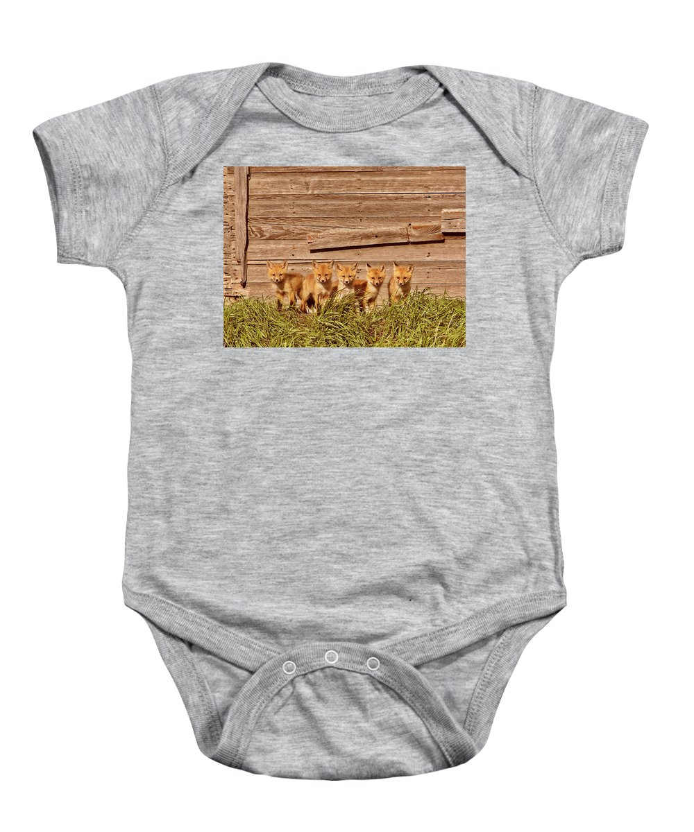 Red Fox Baby Onesie featuring the digital art Five Fox Kits By Old Saskatchewan Granary by Mark Duffy