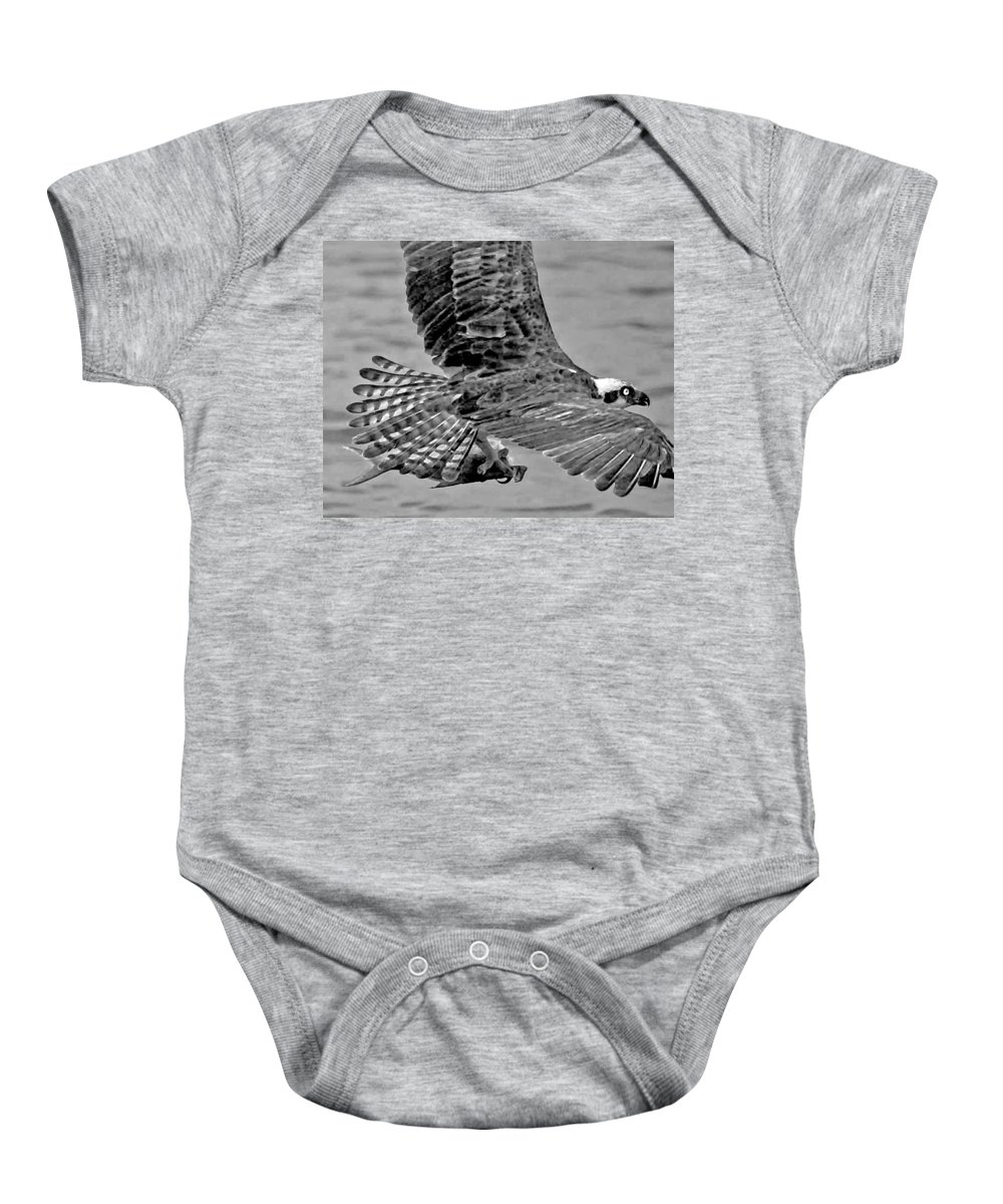 Pelican Baby Onesie featuring the photograph Flight Of The Osprey Bw by Michael Thomas