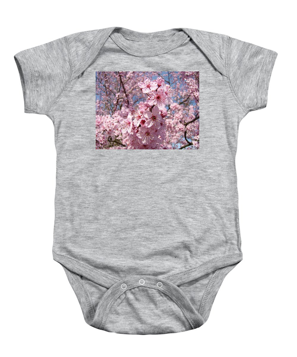 Blossom Baby Onesie featuring the photograph Floral Spring Art Pink Blossoms Canvas Baslee Troutman by Baslee Troutman