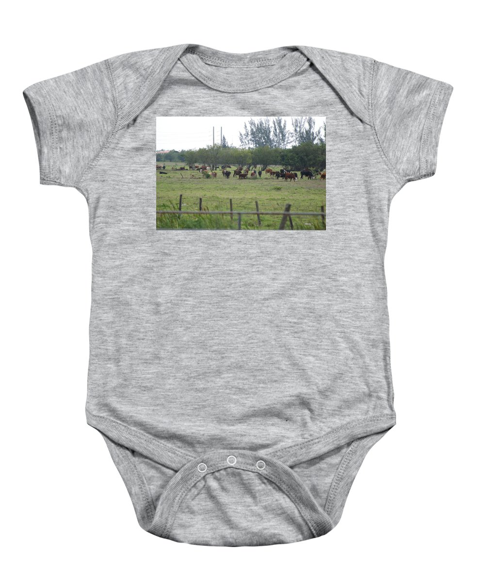 Trees Baby Onesie featuring the photograph Florida Ranch by Rob Hans