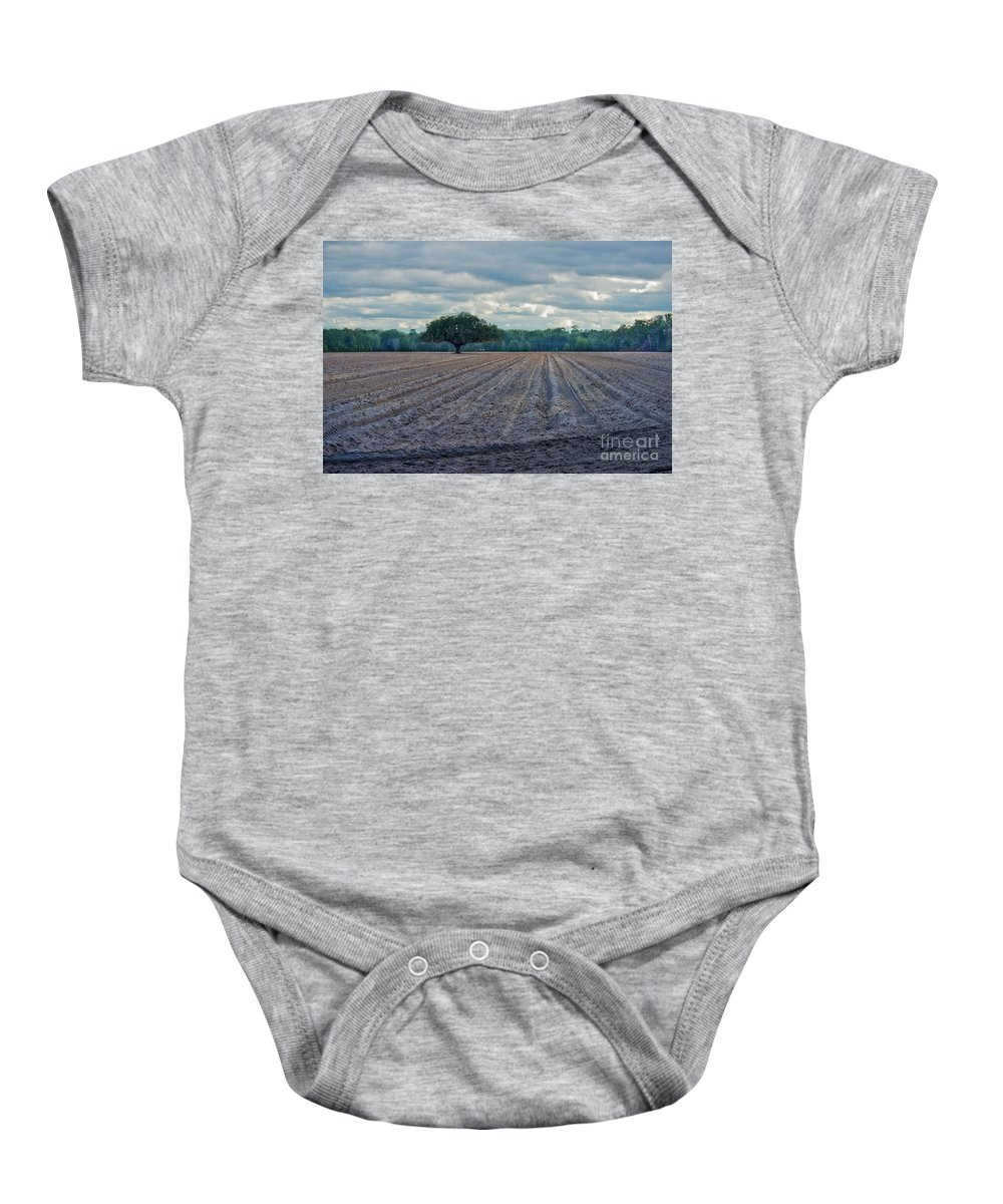 Tree Baby Onesie featuring the photograph Florida Tree by David Arment