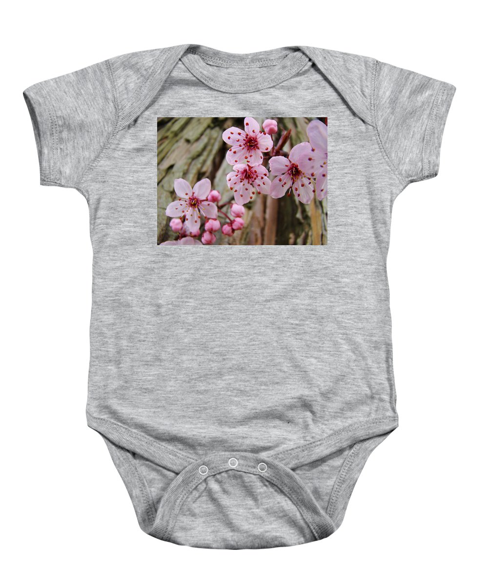 Tree Baby Onesie featuring the photograph Flower Blossoms Pink Tree Blossoms Art Print Giclee Spring Flowers by Baslee Troutman