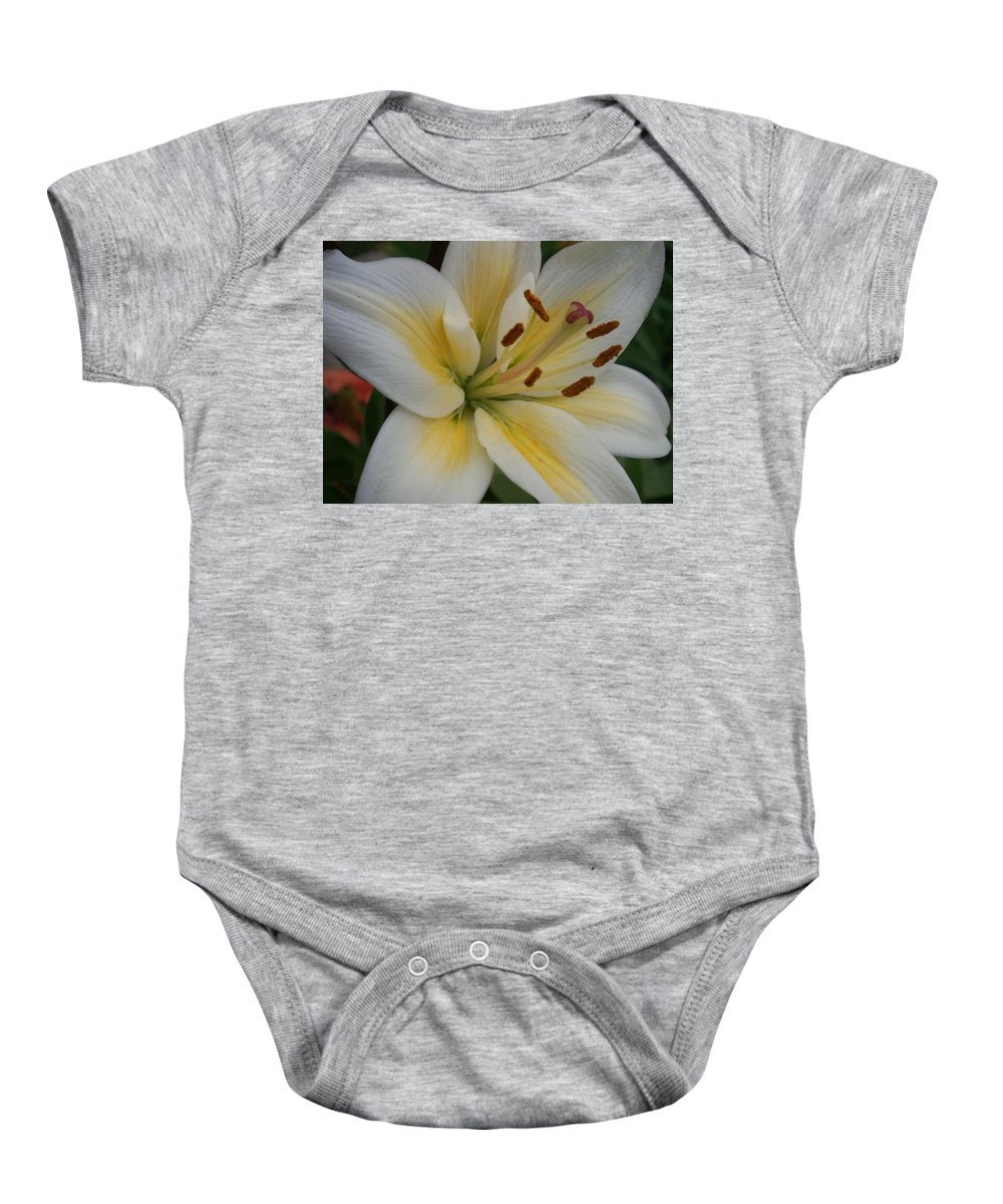 Flower Baby Onesie featuring the photograph Flower Close Up 1 by Anita Burgermeister