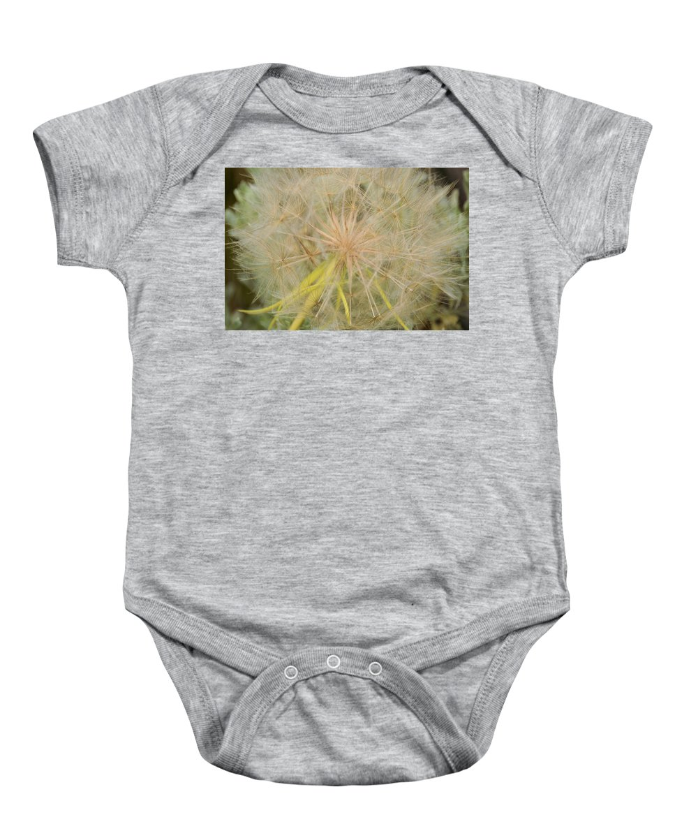 yellowstone National Park Baby Onesie featuring the photograph Fly Away by Wendy Fox