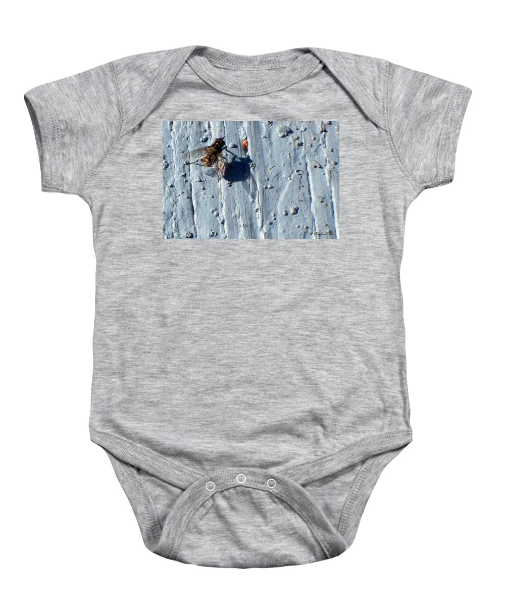 Fly Baby Onesie featuring the photograph Fly On The Wall by Betty Northcutt