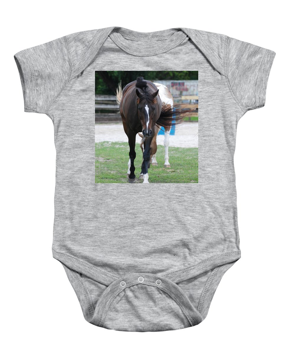 Horses Baby Onesie featuring the photograph Flying Circus by Rob Hans