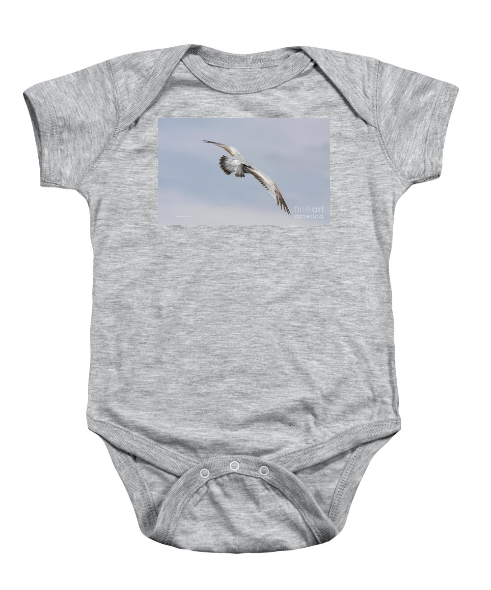 Seagull Baby Onesie featuring the photograph Following The Seagull by Deborah Benoit
