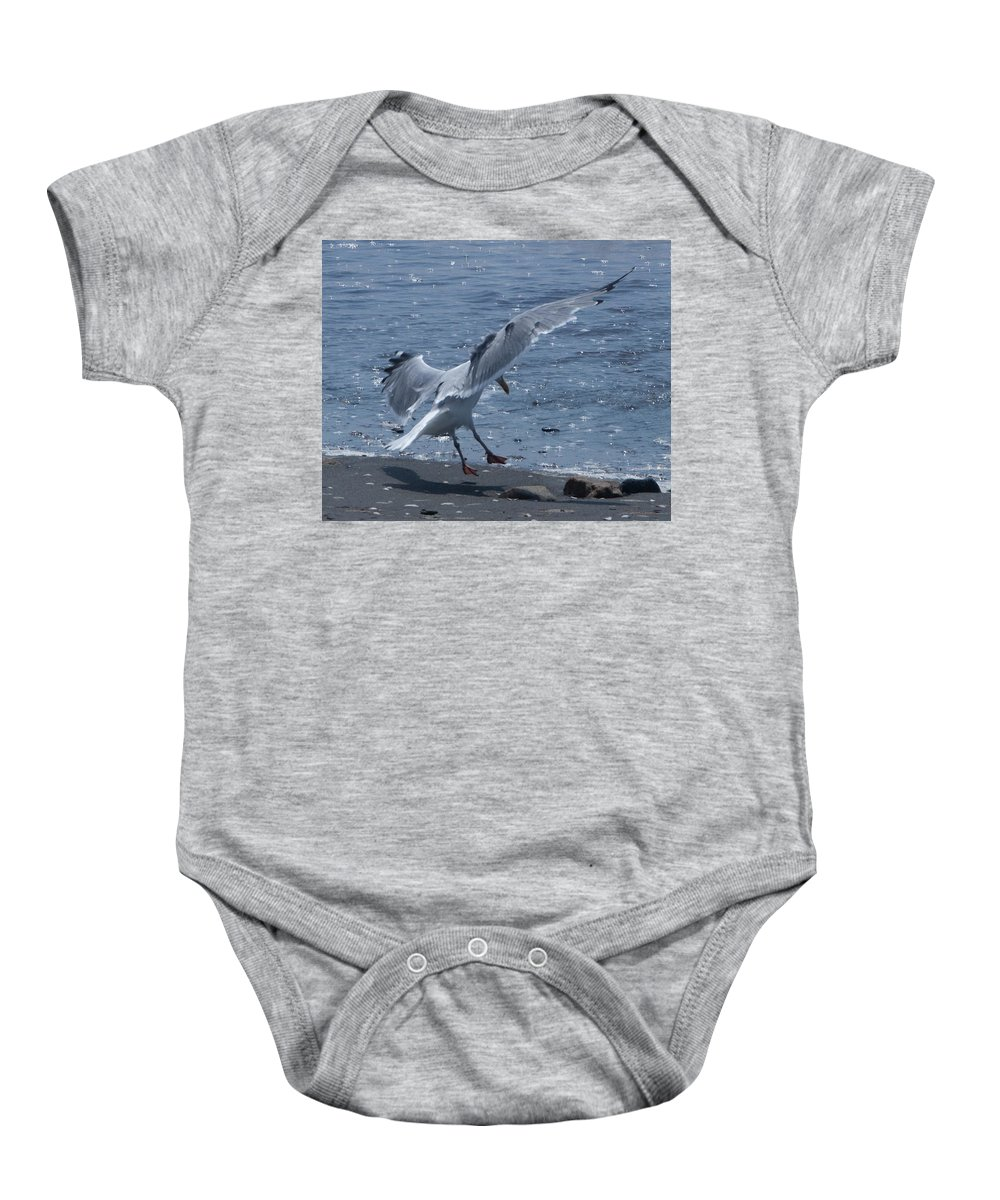 Seagull Baby Onesie featuring the photograph Gear Down by Steven Natanson