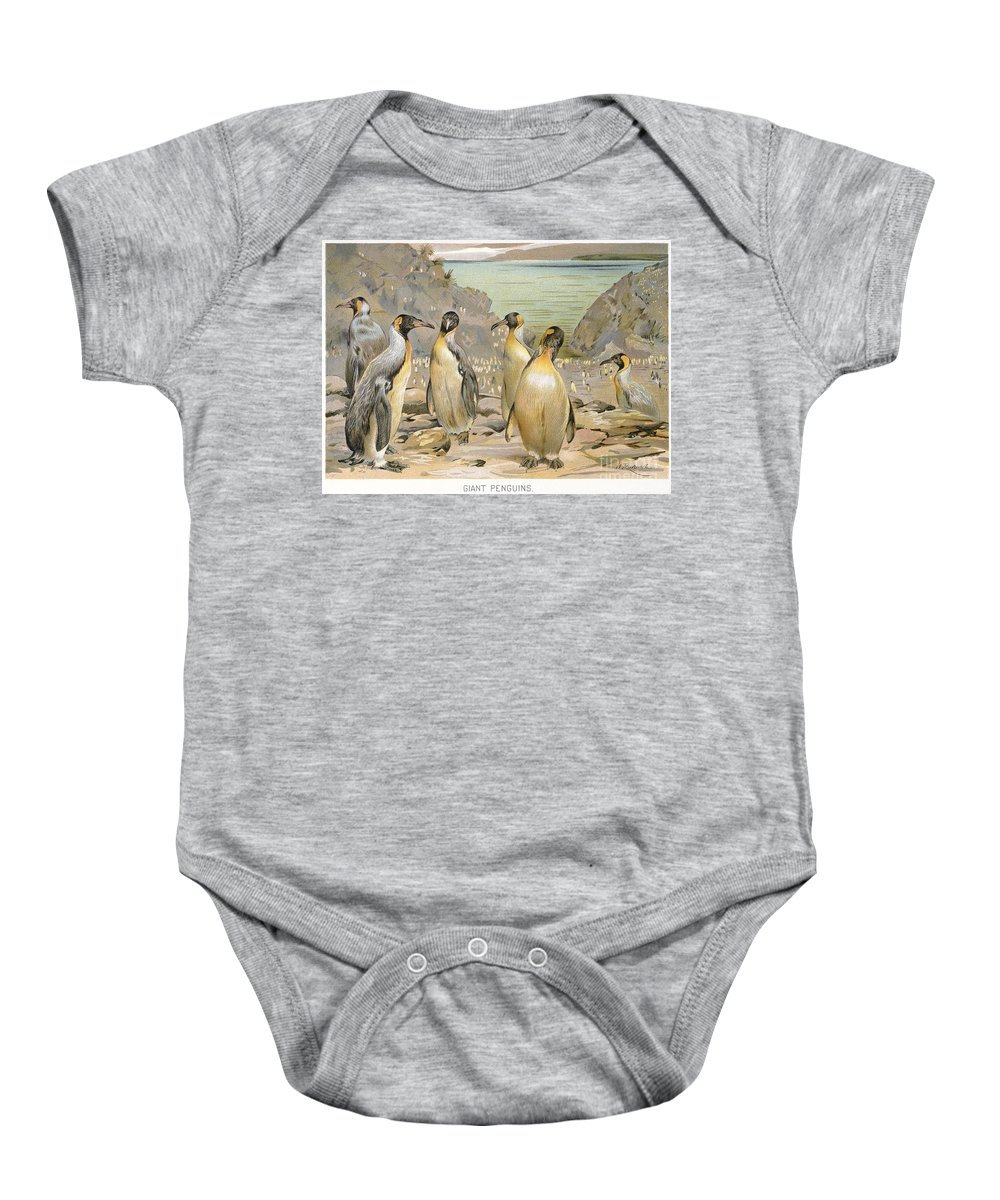 1900 Baby Onesie featuring the photograph Giant Penguins, C1900 by Granger
