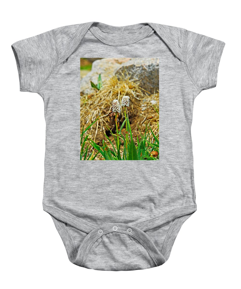 Glacial Baby Onesie featuring the photograph Glacial Wildflowers by Robert Meyers-Lussier