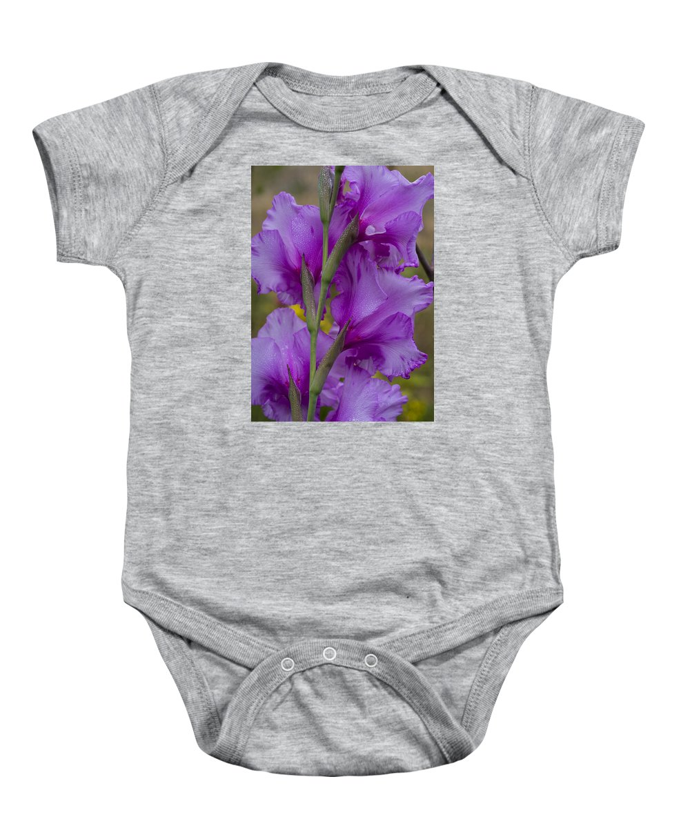 Astoria Baby Onesie featuring the photograph Gladiolus Rear View by Robert Potts