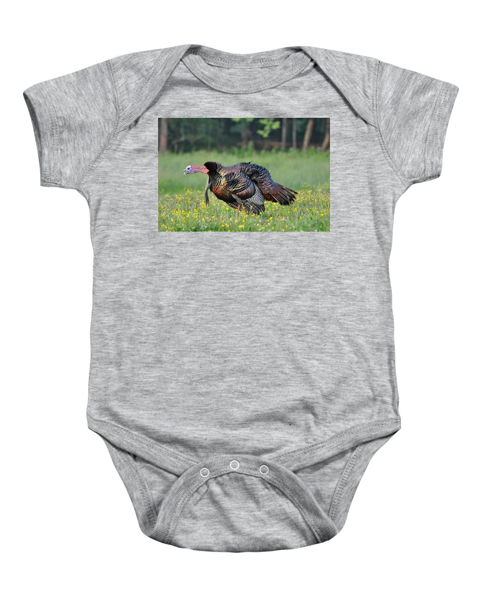 Turkey Baby Onesie featuring the photograph Gobble Gobble by Todd Hostetter