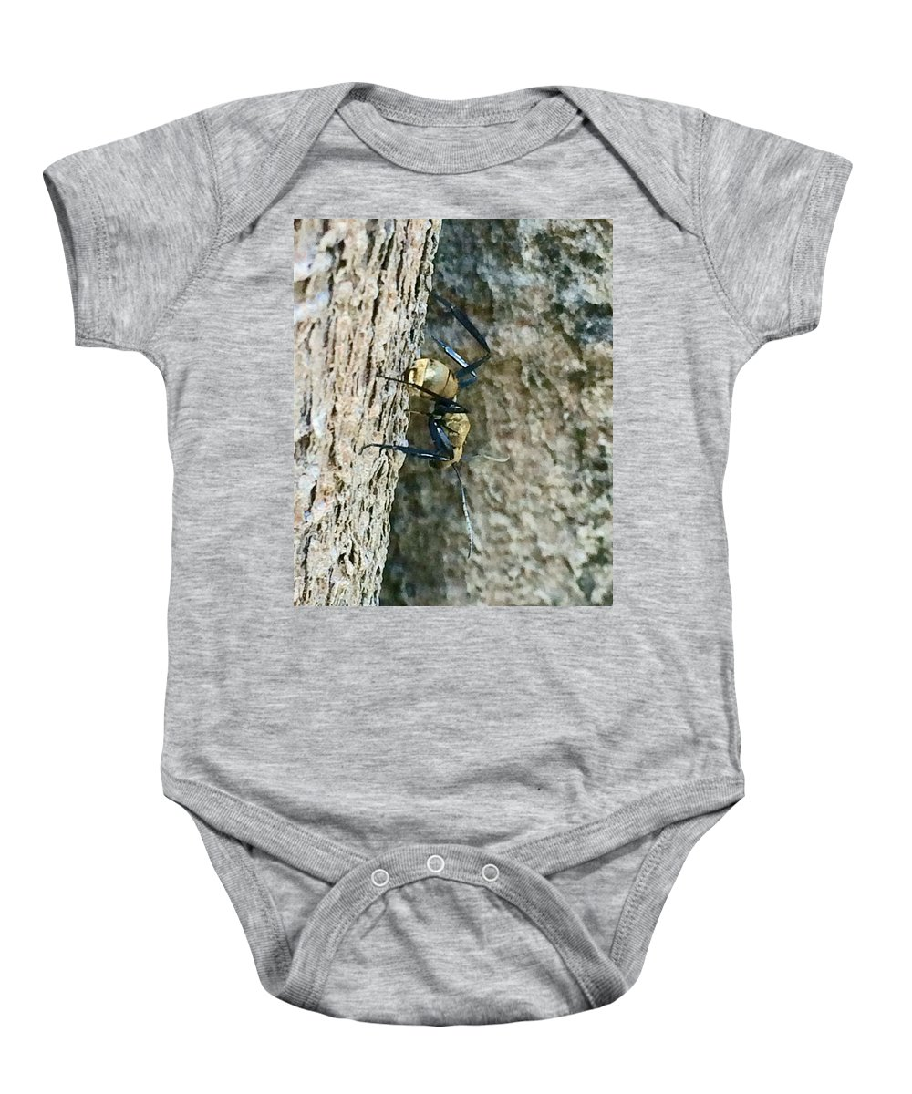 Ant Baby Onesie featuring the photograph Golden Carpenter Ant by Natalia Wallwork