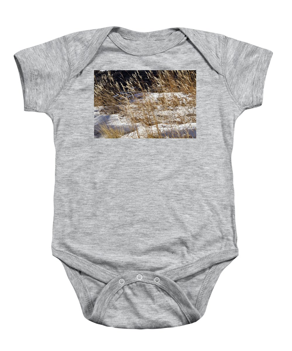Colorado Baby Onesie featuring the photograph Golden Grasses In Sun And Snow by Sandy Swanson