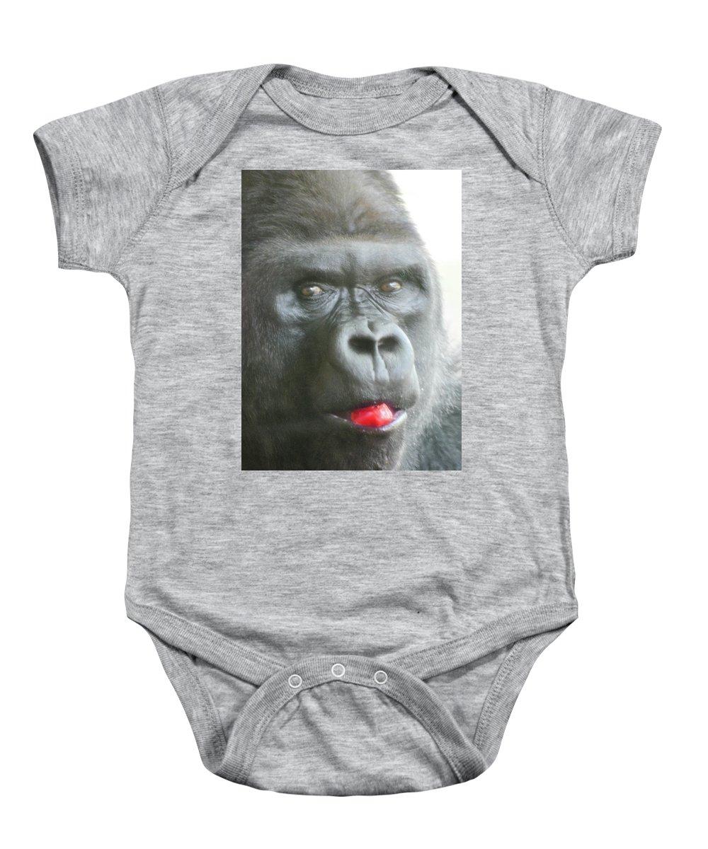 Gorilla Baby Onesie featuring the photograph Gorilla Loves Jello by Gabriela Kuhni