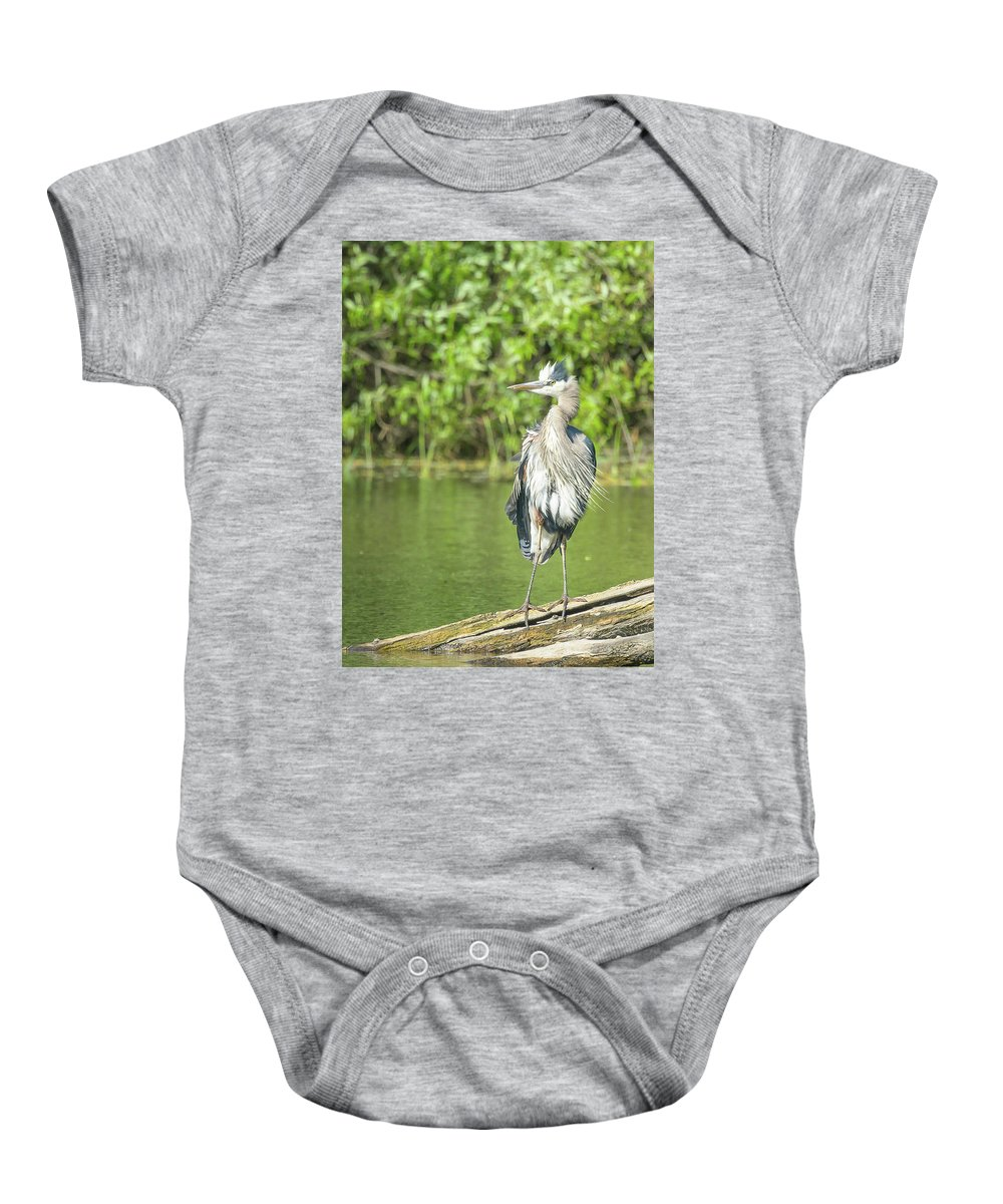 Great Blue Heron Baby Onesie featuring the photograph Great Blue Hair by Richard Eastman