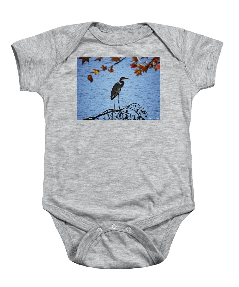 Nature Baby Onesie featuring the photograph Great Blue Heron At Shores Of King's Mountain Point by Matt Taylor