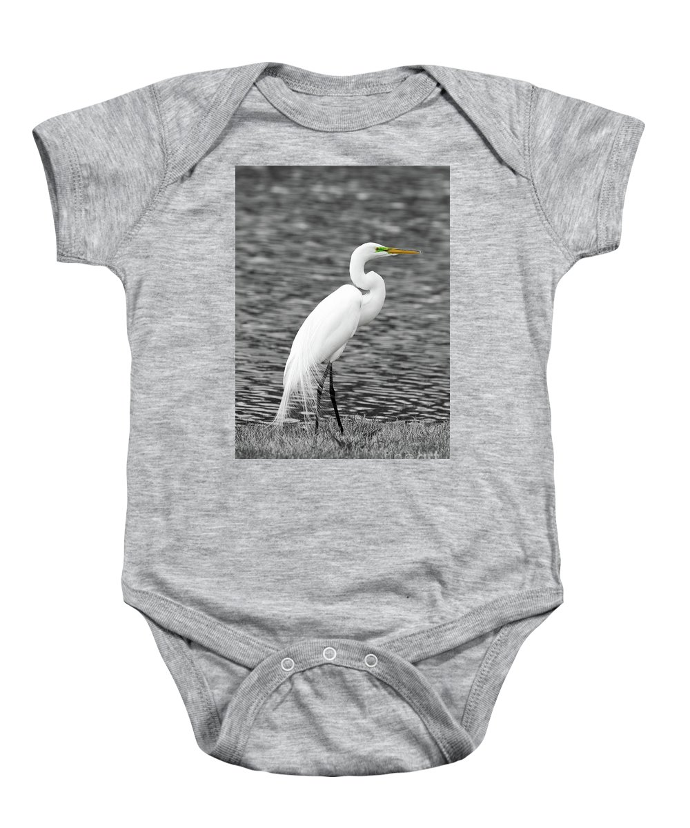 Egret Baby Onesie featuring the photograph Great White Egret by Paul Quinn