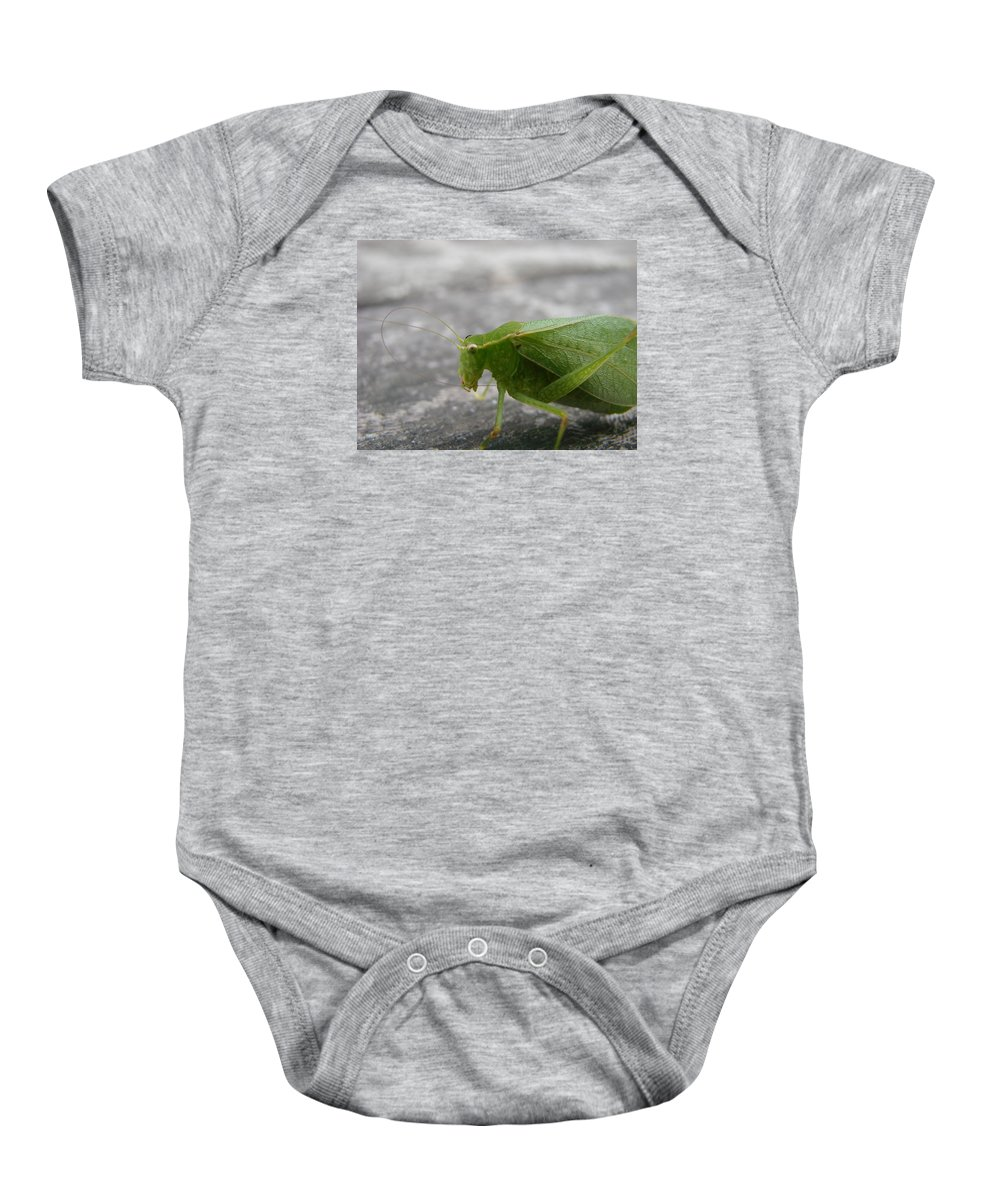 Bugs Baby Onesie featuring the photograph Green Bug by Mary Halpin