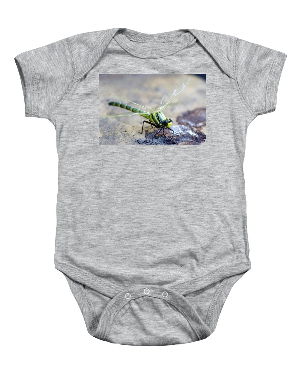 Dragonfly Baby Onesie featuring the photograph Green Dragonfly by Tony Beaver