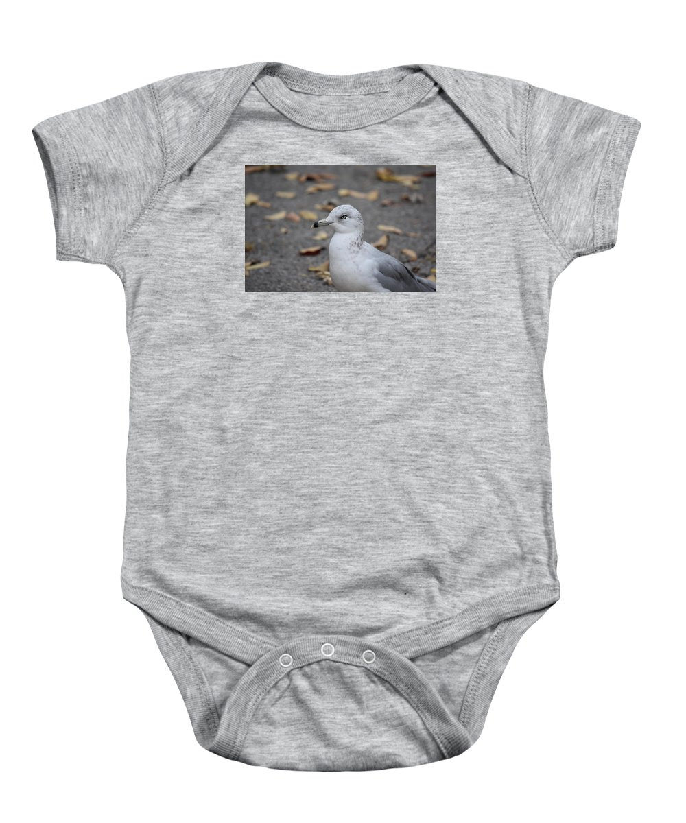 Seagull Baby Onesie featuring the photograph Gull by Maria Keady