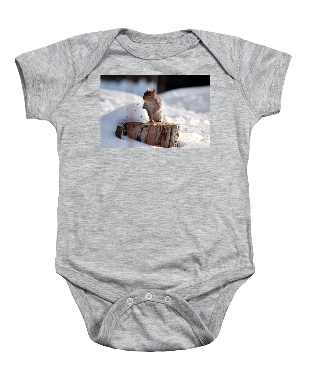Squirrel Baby Onesie featuring the photograph Has Anyone Seen My Nuts by Lori Tambakis