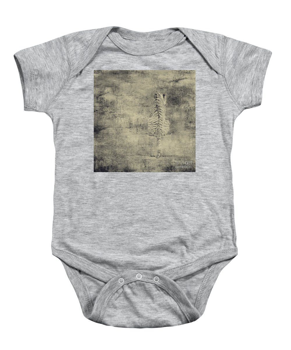 Dipasquale Baby Onesie featuring the photograph Have You Comprehended... by Dana DiPasquale