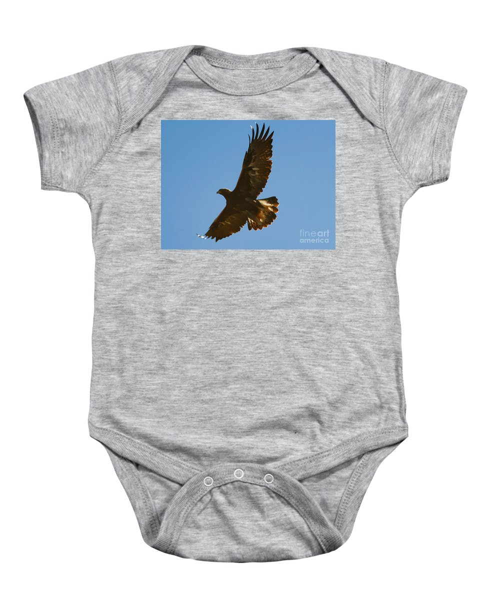 Hawk Baby Onesie featuring the photograph Hawk In Flight by David Lee Thompson